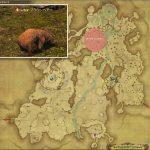 ブラウンベアー - 高地ドラヴァニアの敵生息場所とドロップ素材(FF14 敵素材マップ:蒼天エリア)熊脂