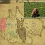 サンベアー - 低地ドラヴァニアの敵生息場所とドロップ素材(FF14 敵素材マップ:蒼天エリア)熊脂