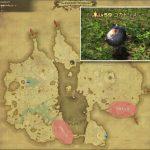 コカトリス - 低地ドラヴァニアの敵生息場所とドロップ素材(FF14 敵素材マップ:蒼天エリア)コカトリスの肉