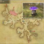 トードスツール - 黒衣森:中央森林の敵生息場所とドロップ素材(FF14 敵素材マップ:新生エリア)