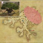 トレント・サップリング - 黒衣森:中央森林の敵生息場所とドロップ素材(FF14 敵素材マップ:新生エリア)