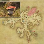 フォレストファンガー - 黒衣森:中央森林の敵生息場所とドロップ素材(FF14 敵素材マップ:新生エリア)