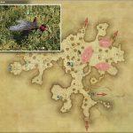 チゴー - 黒衣森:中央森林の敵生息場所とドロップ素材(FF14 敵素材マップ:新生エリア)
