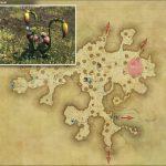 コチュー - 黒衣森:中央森林の敵生息場所とドロップ素材(FF14 敵素材マップ:新生エリア)