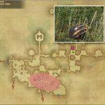 ヴィーヴィル - 黒衣森:東部森林の敵生息場所とドロップ素材(FF14 敵素材マップ:新生エリア)