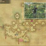 ラプトル・ポーチャー - 黒衣森:東部森林の敵生息場所とドロップ素材(FF14 敵素材マップ:新生エリア)