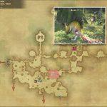 ジズ・ゴーリン - 黒衣森:東部森林の敵生息場所とドロップ素材(FF14 敵素材マップ:新生エリア)