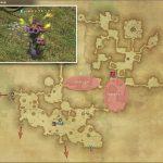 ドクキリタケ - 黒衣森:東部森林の敵生息場所とドロップ素材(FF14 敵素材マップ:新生エリア)