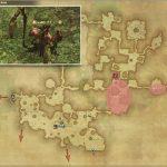 オチュー - 黒衣森:東部森林の敵生息場所とドロップ素材(FF14 敵素材マップ:新生エリア)