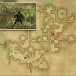 IIIコホルス・ラクエリウス - 黒衣森:東部森林の敵生息場所とドロップ素材(FF14 敵素材マップ:新生エリア)
