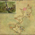ガラゴ - 低地ラノシアの敵生息場所とドロップ素材(FF14 敵素材マップ:新生エリア)