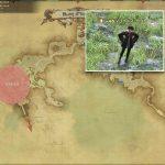 Vコホルス・セクトール - モードゥナの敵生息場所とドロップ素材(FF14 敵素材マップ:新生エリア)