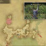 リングテイル - 外地ラノシアの敵生息場所とドロップ素材(FF14 敵素材マップ:新生エリア)