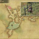 キキルン・ビーター - 黒衣森:南部森林の敵生息場所とドロップ素材(FF14 敵素材マップ:新生エリア)