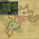 トレント - 黒衣森:南部森林の敵生息場所とドロップ素材(FF14 敵素材マップ:新生エリア)
