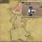 サンドスキン・ペイスト - 南ザナラーンの敵生息場所とドロップ素材(FF14 敵素材マップ:新生エリア)