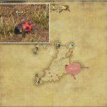 レディバグ - 西ザナラーンの敵生息場所とドロップ素材(FF14 敵素材マップ:新生エリア)