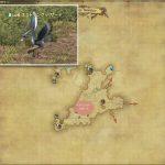 ネストリング・バザード - 西ザナラーンの敵生息場所とドロップ素材(FF14 敵素材マップ:新生エリア)